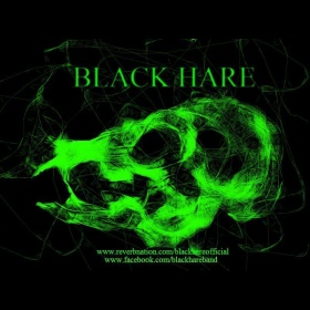 Various - Black Hare