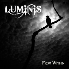 From Within - Luminis